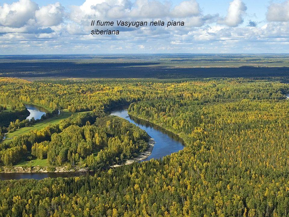 Il fiume Vasyugan nella piana siberiana