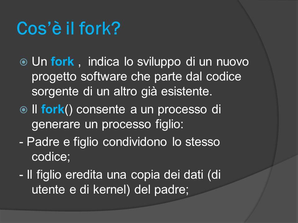 Cos'è il fork.