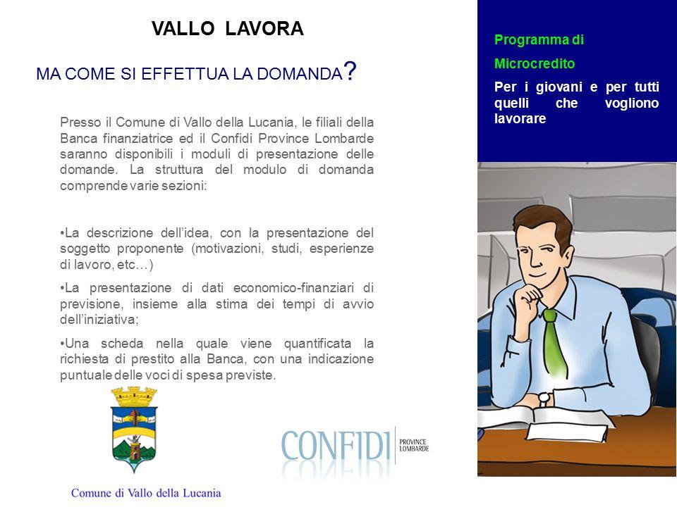 Presso il Comune di Vallo della Lucania, le filiali della Banca finanziatrice ed il Confidi Province Lombarde saranno disponibili i moduli di presentazione delle domande.