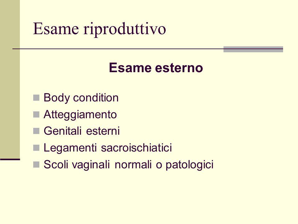 Esame riproduttivo Esame esterno Body condition Atteggiamento Genitali esterni Legamenti sacroischiatici Scoli vaginali normali o patologici