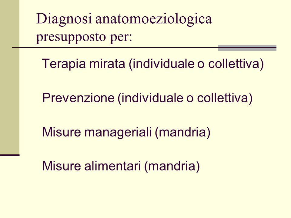 Diagnosi anatomoeziologica presupposto per: Terapia mirata (individuale o collettiva) Prevenzione (individuale o collettiva) Misure manageriali (mandr