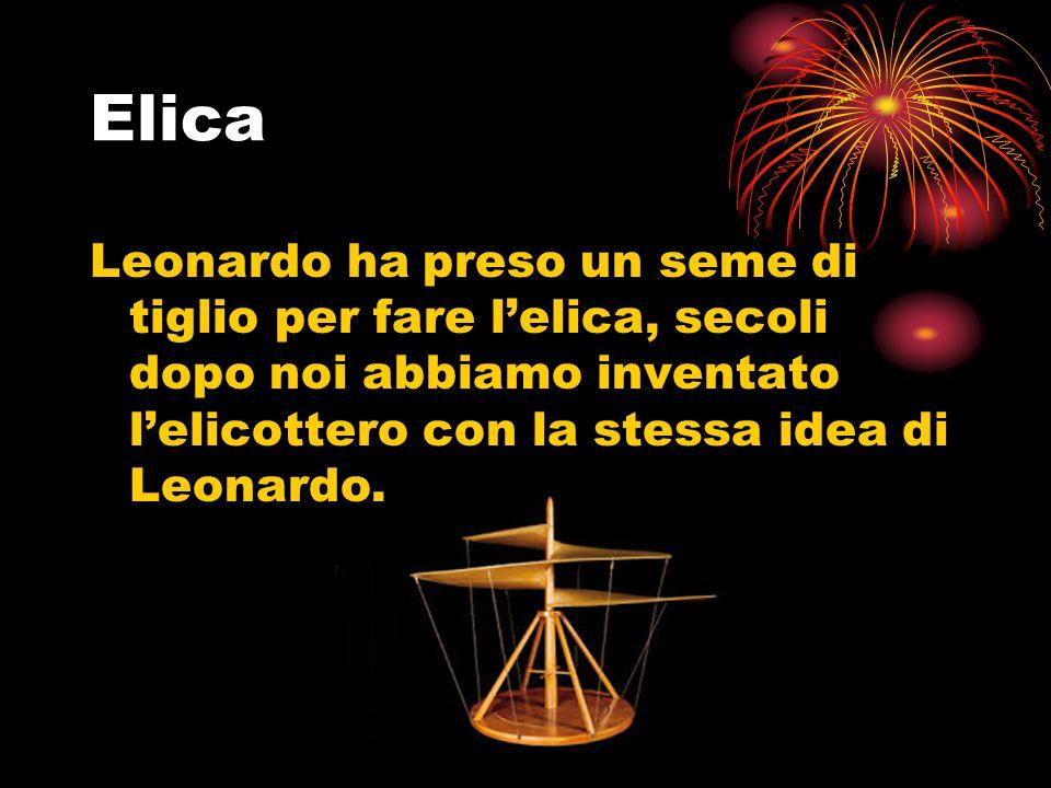 Elica Leonardo ha preso un seme di tiglio per fare l'elica, secoli dopo noi abbiamo inventato l'elicottero con la stessa idea di Leonardo.