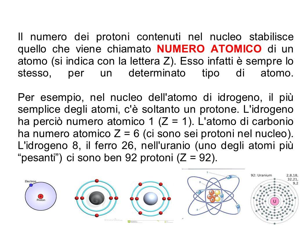 Il numero dei protoni contenuti nel nucleo stabilisce quello che viene chiamato NUMERO ATOMICO di un atomo (si indica con la lettera Z).