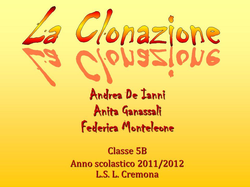 Andrea De Ianni Anita Ganassali Federica Monteleone Classe 5B Anno scolastico 2011/2012 L.S. L. Cremona