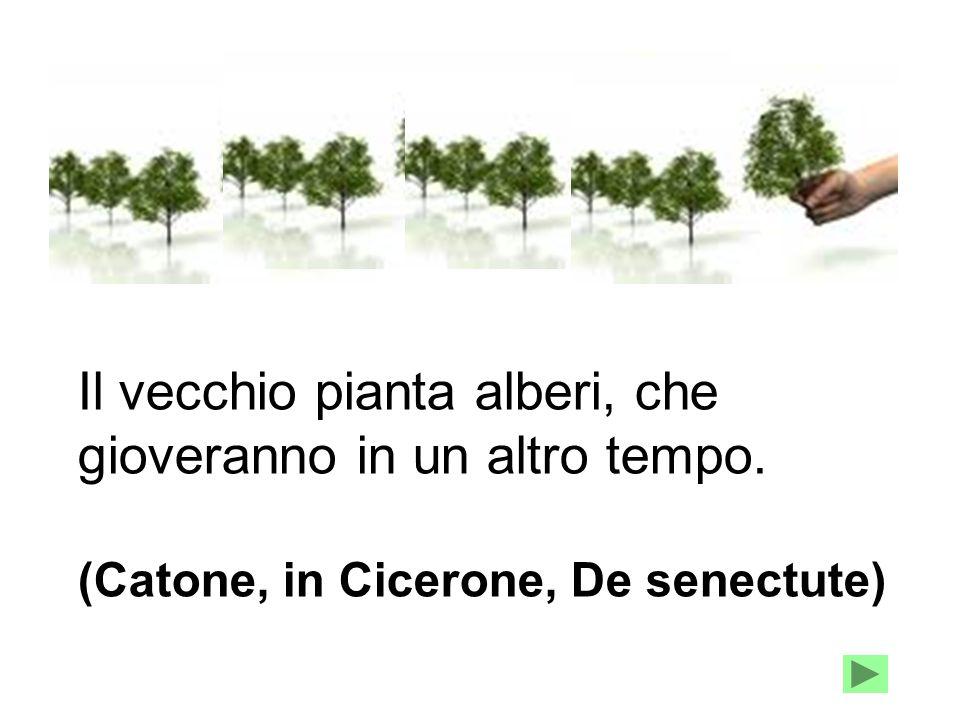 Il vecchio pianta alberi, che gioveranno in un altro tempo. (Catone, in Cicerone, De senectute)