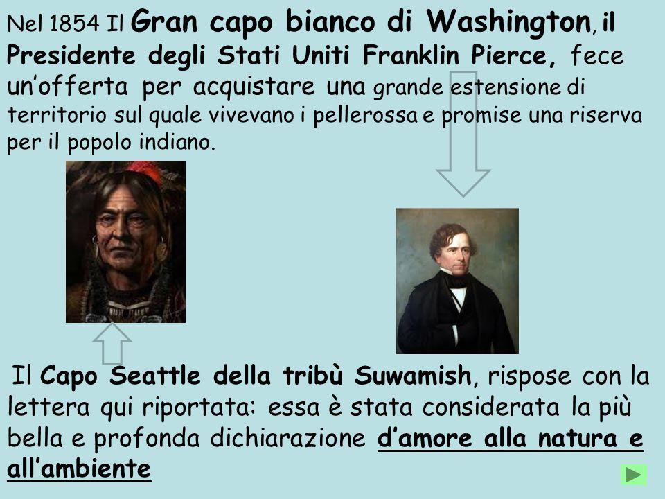 Nel 1854 Il Gran capo bianco di Washington, il Presidente degli Stati Uniti Franklin Pierce, fece un'offerta per acquistare una grande estensione di territorio sul quale vivevano i pellerossa e promise una riserva per il popolo indiano.