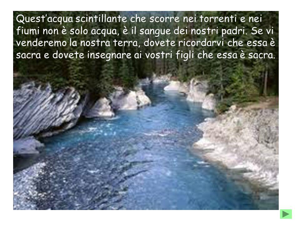 Quest'acqua scintillante che scorre nei torrenti e nei fiumi non è solo acqua, è il sangue dei nostri padri. Se vi venderemo la nostra terra, dovete r