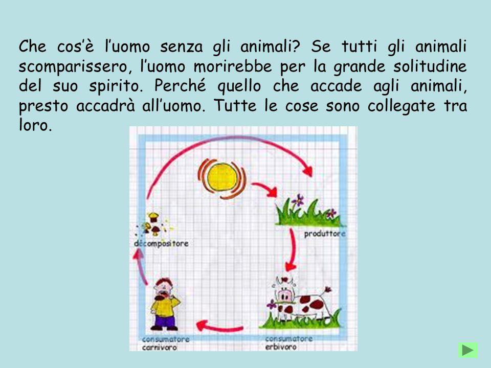 Che cos'è l'uomo senza gli animali? Se tutti gli animali scomparissero, l'uomo morirebbe per la grande solitudine del suo spirito. Perché quello che a