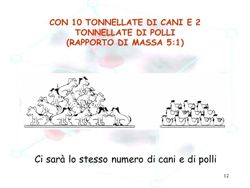 12 CON 10 TONNELLATE DI CANI E 2 TONNELLATE DI POLLI (RAPPORTO DI MASSA 5:1) Ci sarà lo stesso numero di cani e di polli