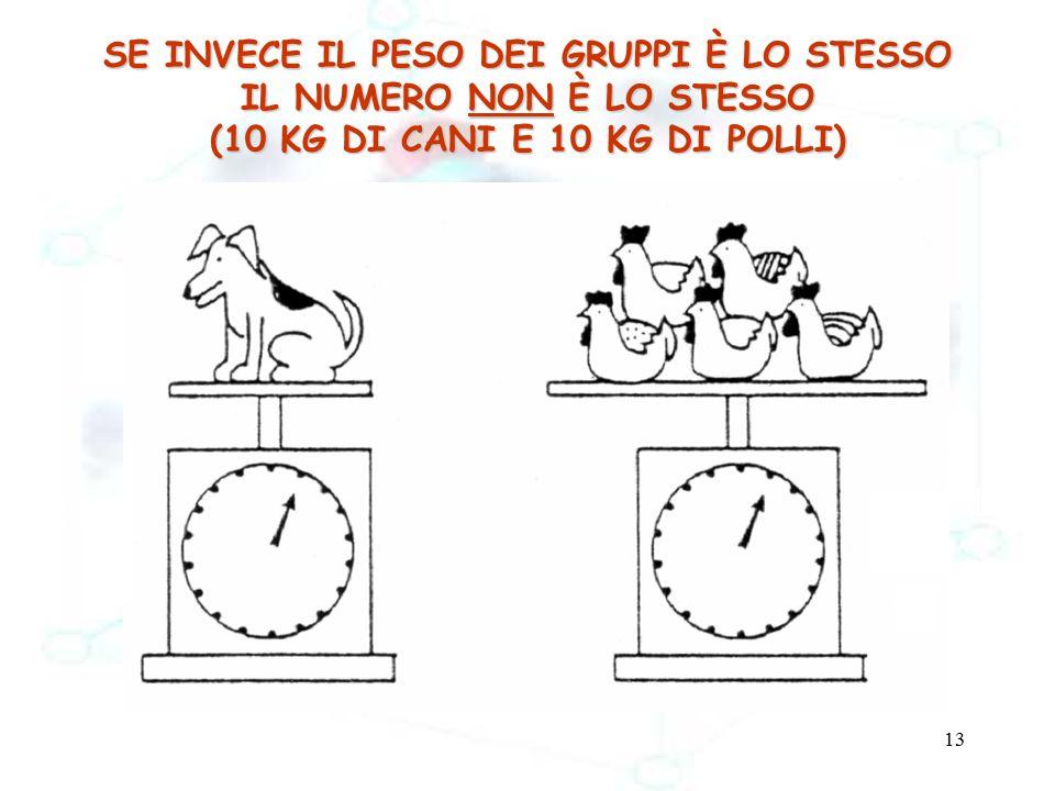 13 SE INVECE IL PESO DEI GRUPPI È LO STESSO IL NUMERO NON È LO STESSO (10 KG DI CANI E 10 KG DI POLLI) 1 cane 5 polli 10 kg