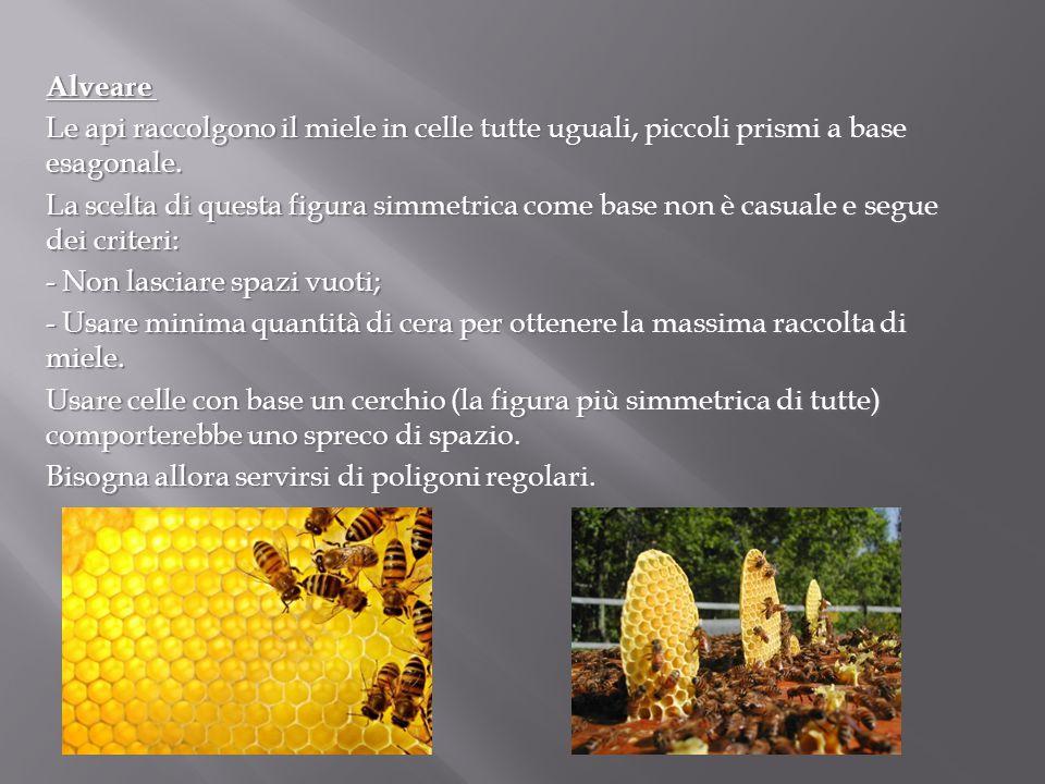 Alveare Alveare Le api raccolgono il miele in celle tutte uguali, piccoli prismi a base esagonale. La scelta di questa figura simmetrica come base non