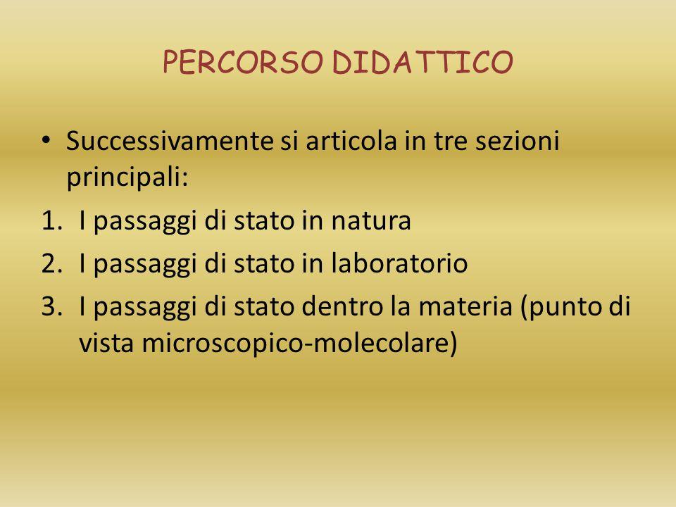 Successivamente si articola in tre sezioni principali: 1.I passaggi di stato in natura 2.I passaggi di stato in laboratorio 3.I passaggi di stato dent
