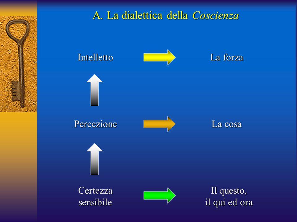 Certezzasensibile Percezione Intelletto Il questo, il qui ed ora La cosa La forza A. La dialettica della Coscienza