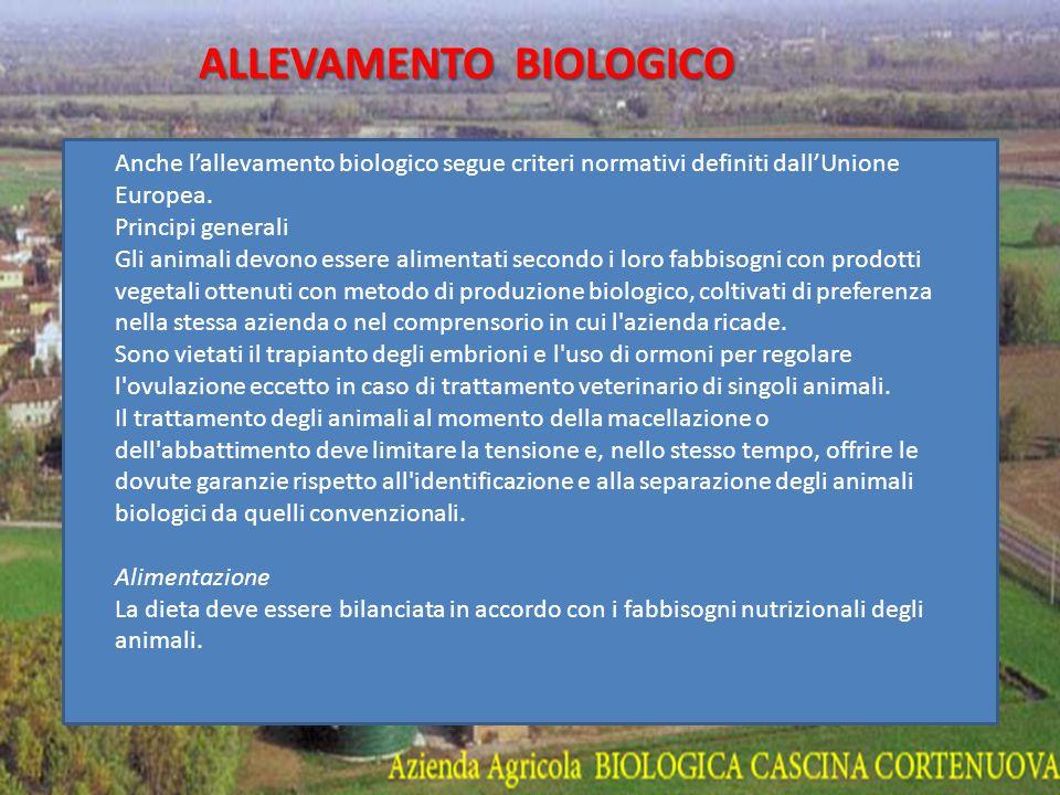 AGRICOLTURA BIOLOGICA - Il termine agricoltura biologica indica un metodo di coltivazione e di allevamento che ammette solo l impiego di sostanze naturali, presenti cioè in natura, escludendo l utilizzo di sostanze di sintesi chimica (concimi, diserbanti, insetticidi).