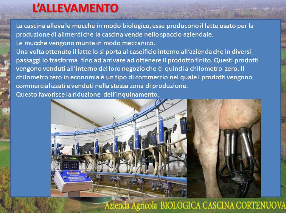 CASCINA CORTENOVA LA STORIA La cascina, a conduzione familiare dal 1959, è dal 1998 certificata Azienda Agricola Biologica: l irrigazione con acqua sorgiva, l uso di concime naturale e l eliminazione di diserbanti e pesticidi nella coltivazione di cereali e prati perenni hanno migliorato la salute degli animali e del loro latte che il caseificio aziendale trasforma.