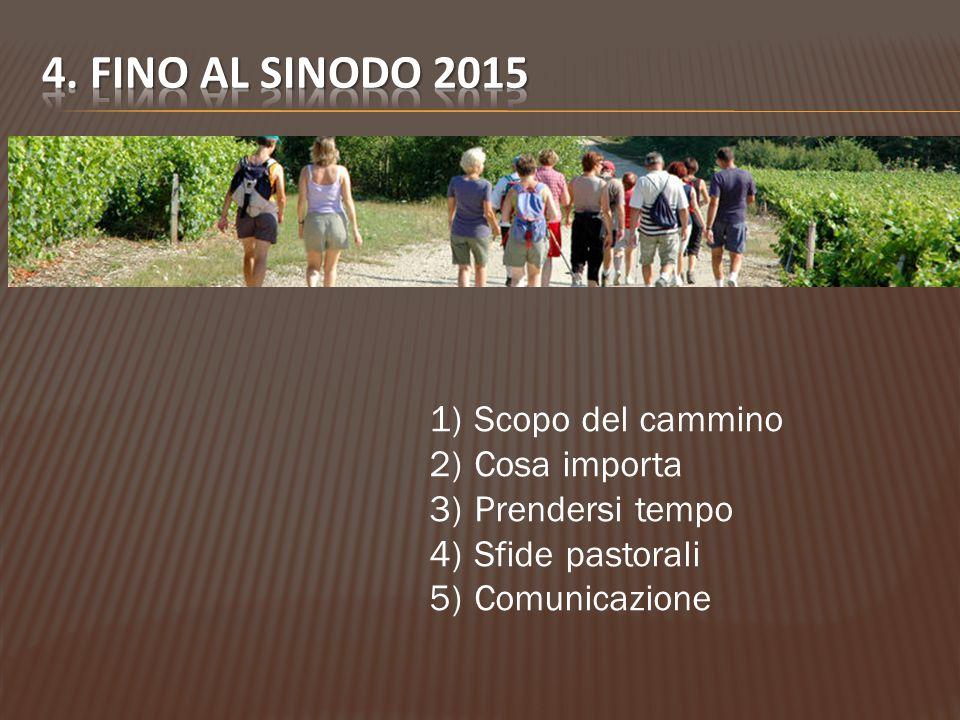 1) Scopo del cammino 2) Cosa importa 3) Prendersi tempo 4) Sfide pastorali 5) Comunicazione