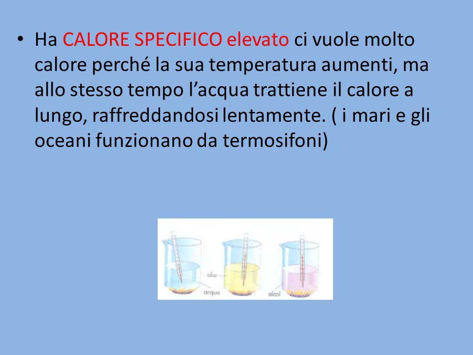 Ha CALORE SPECIFICO elevato ci vuole molto calore perché la sua temperatura aumenti, ma allo stesso tempo l'acqua trattiene il calore a lungo, raffred