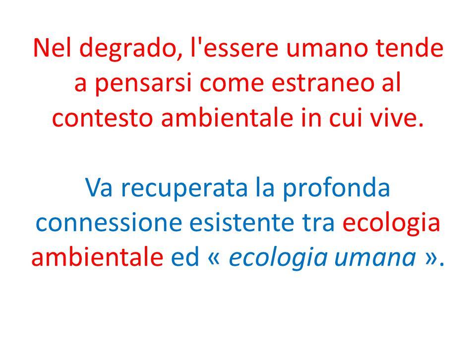 Nel degrado, l'essere umano tende a pensarsi come estraneo al contesto ambientale in cui vive. Va recuperata la profonda connessione esistente tra eco