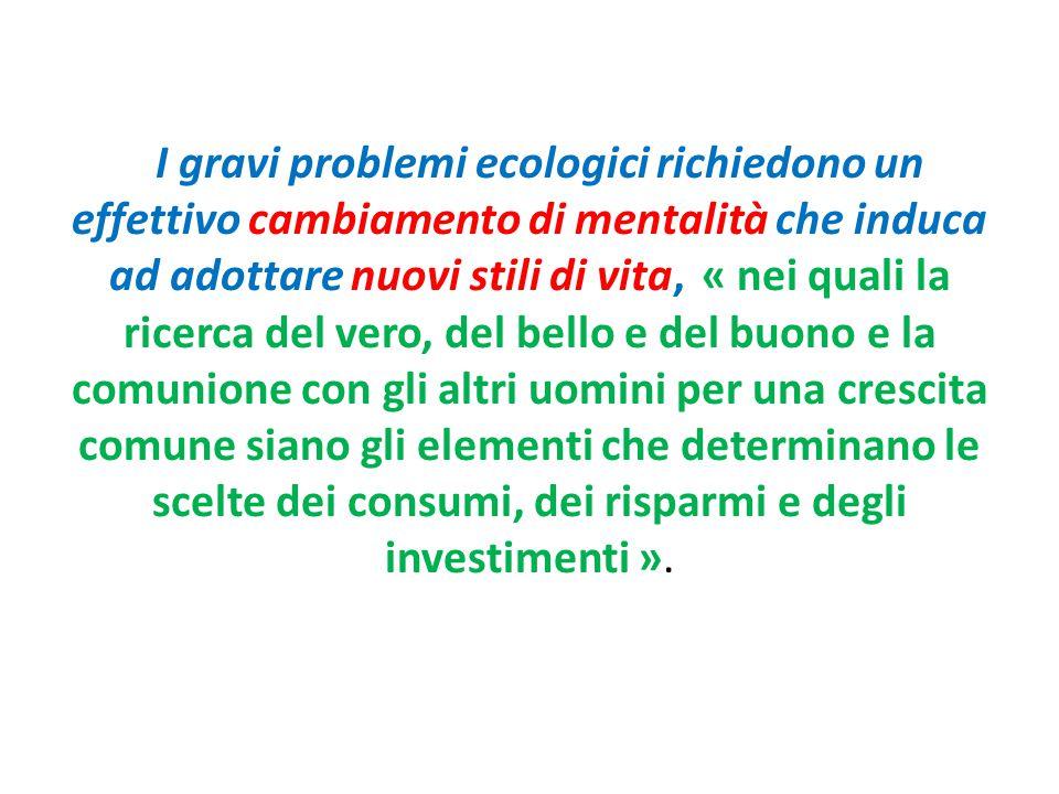 I gravi problemi ecologici richiedono un effettivo cambiamento di mentalità che induca ad adottare nuovi stili di vita, « nei quali la ricerca del ver