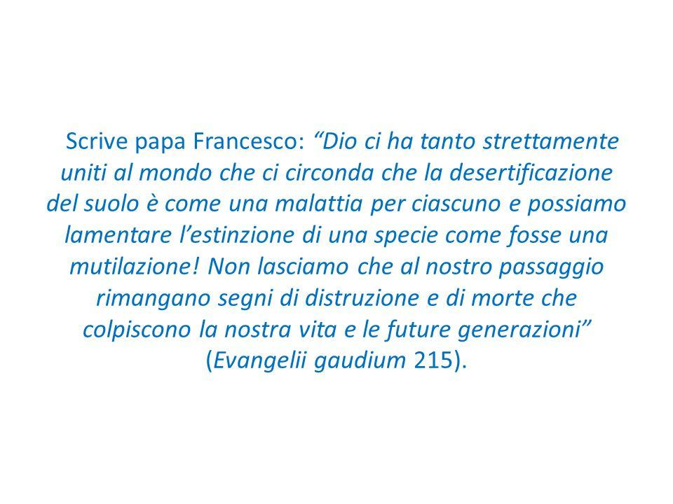 """Scrive papa Francesco: """"Dio ci ha tanto strettamente uniti al mondo che ci circonda che la desertificazione del suolo è come una malattia per ciascuno"""
