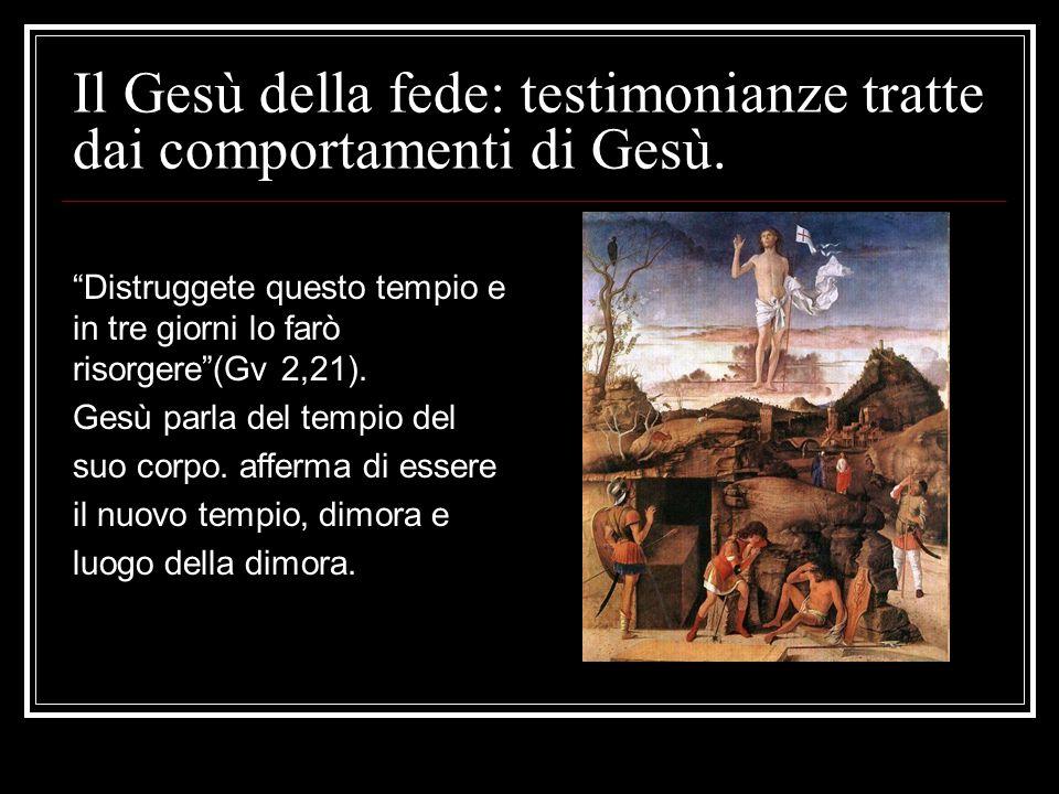 """Il Gesù della fede: testimonianze tratte dai comportamenti di Gesù. """"Distruggete questo tempio e in tre giorni lo farò risorgere""""(Gv 2,21). Gesù parla"""