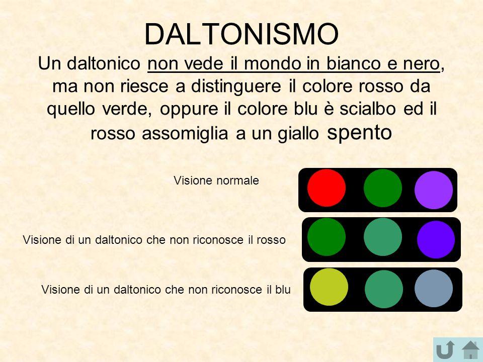 DALTONISMO Un daltonico non vede il mondo in bianco e nero, ma non riesce a distinguere il colore rosso da quello verde, oppure il colore blu è scialb