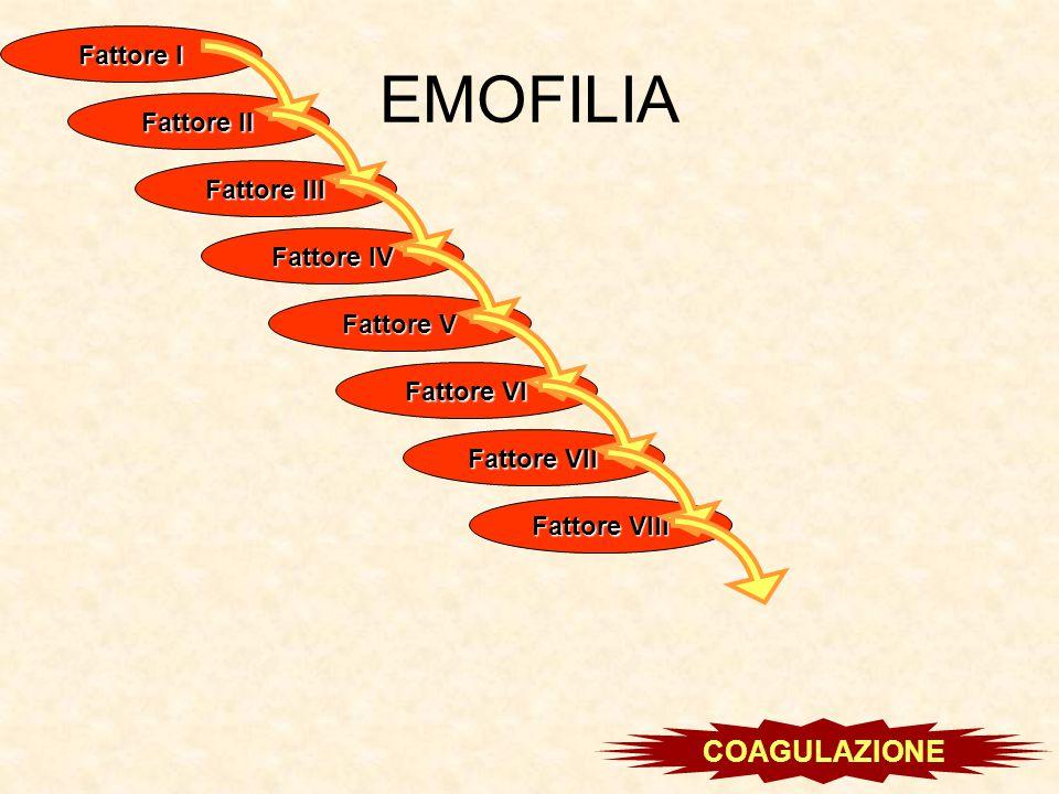 EMOFILIA Fattore I Fattore II Fattore III Fattore IV Fattore V Fattore VI Fattore VII Fattore VIII COAGULAZIONE
