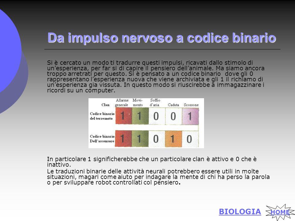 Da impulso nervoso a codice binario Si è cercato un modo ti tradurre questi impulsi, ricavati dallo stimolo di un'esperienza, per far si di capire il pensiero dell'animale.