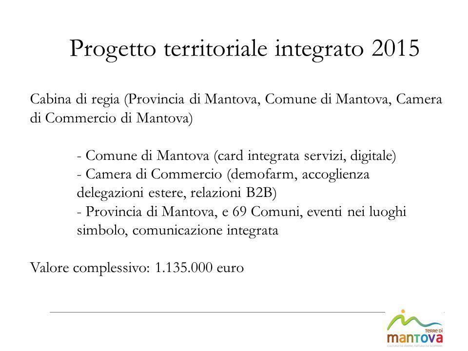Cabina di regia (Provincia di Mantova, Comune di Mantova, Camera di Commercio di Mantova) - Comune di Mantova (card integrata servizi, digitale) - Cam