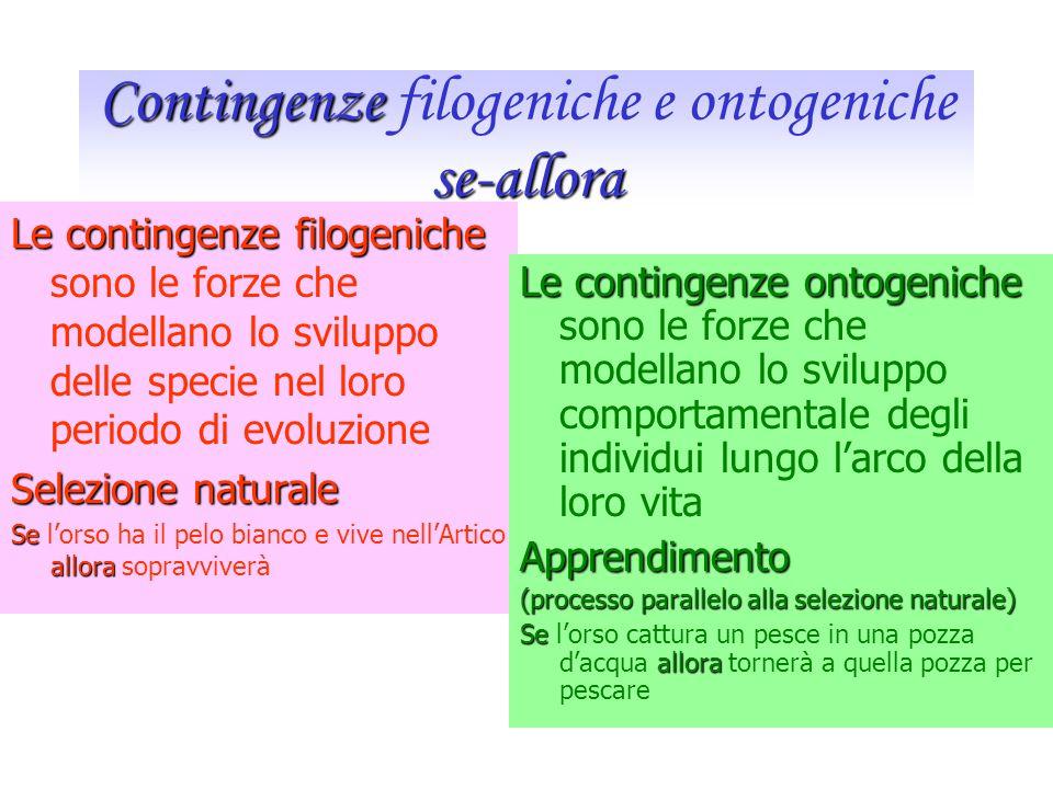 Oggetto di studio sono due processi paralleli Filogenesi Studio dei cambiamenti comportamentali che avvengono nel tempo Entro una determinata specie C