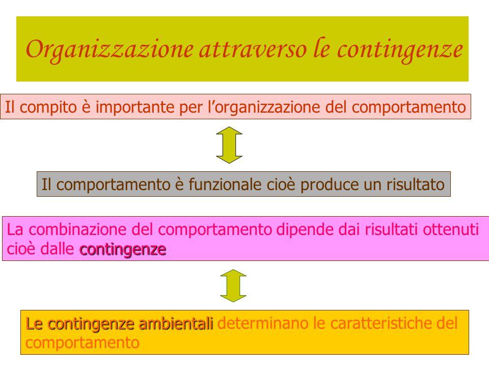 Cuspidi evolutive persona/ambiente Cambiamenti nelle interazioni persona/ambiente, che rendono possibili nuove interazioni multiple cuspide evolutiva