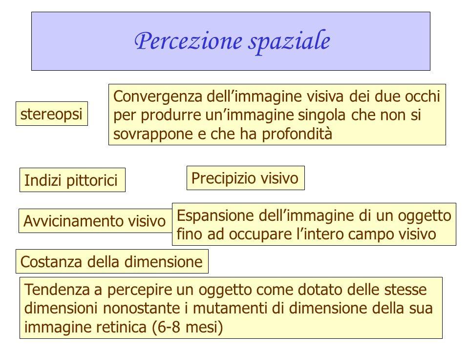 Percezione sociale precoce: visi ed espressioni facciali I bambini di 3 mesi preferiscono i visi normali ad altri modelli identici in cui vi siano are