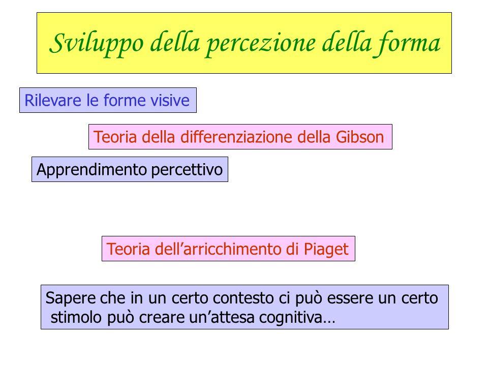 Apprendimento percettivo e suo sviluppo nell'infanzia Sviluppo dell'attenzione Mutamenti nella durata attentiva La formazione reticolare non è complet