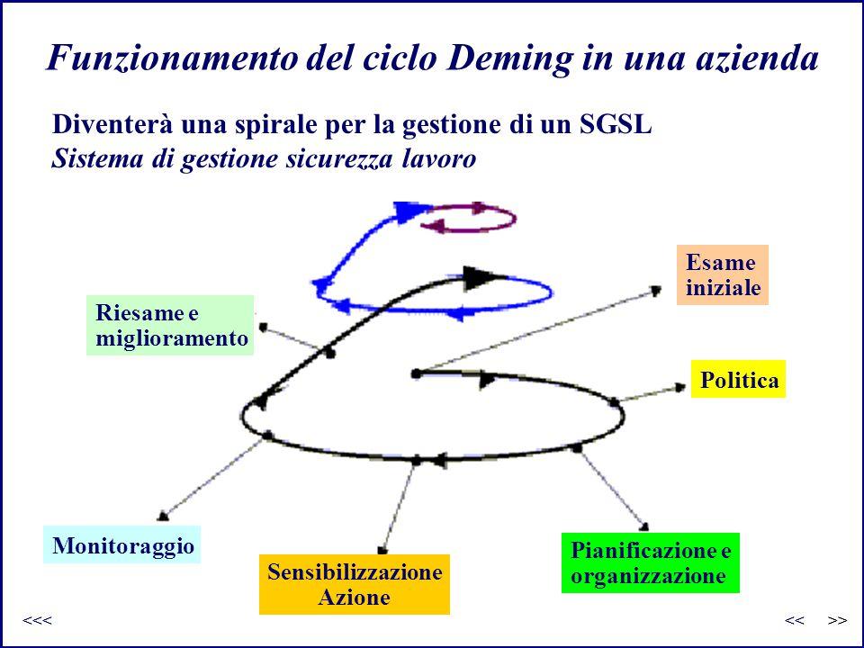 Funzionamento del ciclo Deming in una azienda Riesame e miglioramento Esame iniziale Politica Pianificazione e organizzazione Sensibilizzazione Azione