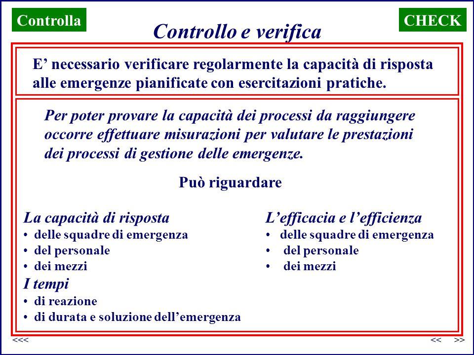 Controllo e verifica CHECK E' necessario verificare regolarmente la capacità di risposta alle emergenze pianificate con esercitazioni pratiche. Per po