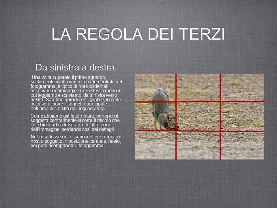 LA REGOLA DEI TERZI Da sinistra a destra. Una volta superato il primo sguardo, solitamente rivolto verso la parte centrale del fotogramma, è tipico di