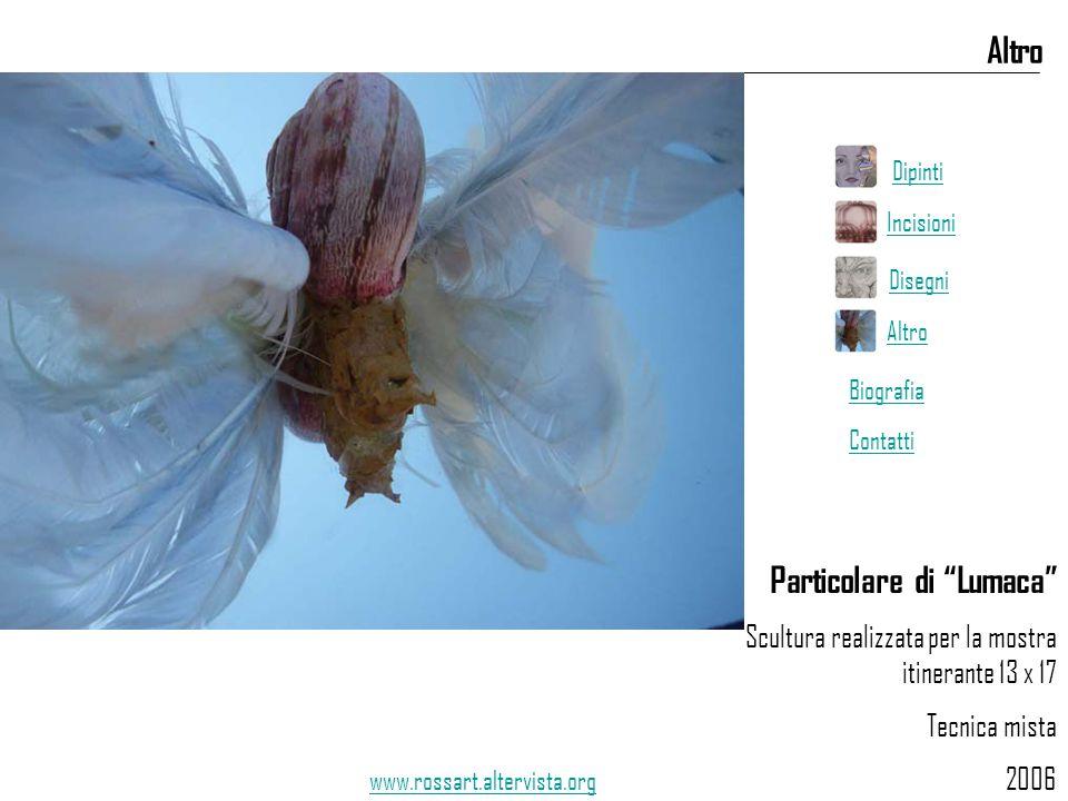 """Particolare di """"Lumaca"""" Scultura realizzata per la mostra itinerante 13 x 17 Tecnica mista 2006 Altro www.rossart.altervista.org Dipinti Incisioni Dis"""
