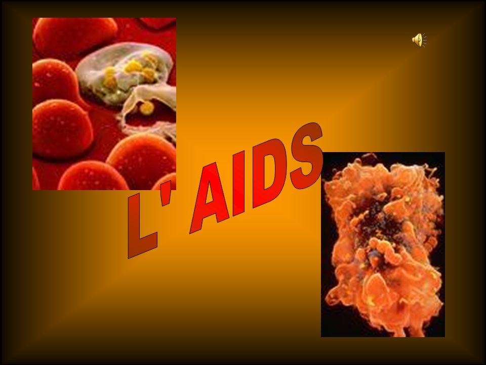 La viremia è un parametro che indica il numero di copie di RNA presenti in un millilitro (ml) di sangue; poiché ciascun HIV possiede due molecole di questo acido nucleico, il numero di virus presenti corrisponde alla metà del valore di viremia.
