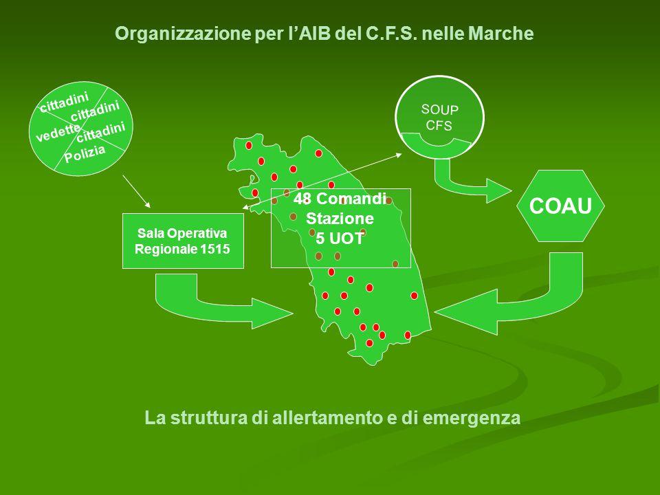 Organizzazione per l'AIB del C.F.S.