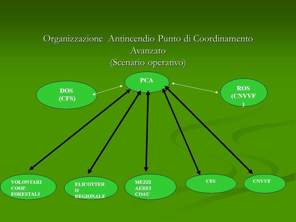 Organizzazione Antincendio Punto di Coordinamento Avanzato (Scenario operativo) DOS (CFS) VOLONTARI COOP.