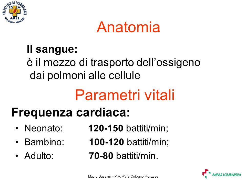 Mauro Bassani – P.A. AVIS Cologno Monzese Anatomia Il sangue: è il mezzo di trasporto dell'ossigeno dai polmoni alle cellule Parametri vitali Frequenz