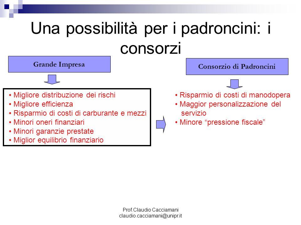 Prof.Claudio Cacciamani claudio.cacciamani@unipr.it Una possibilità per i padroncini: i consorzi Grande Impresa Consorzio di Padroncini Migliore distr