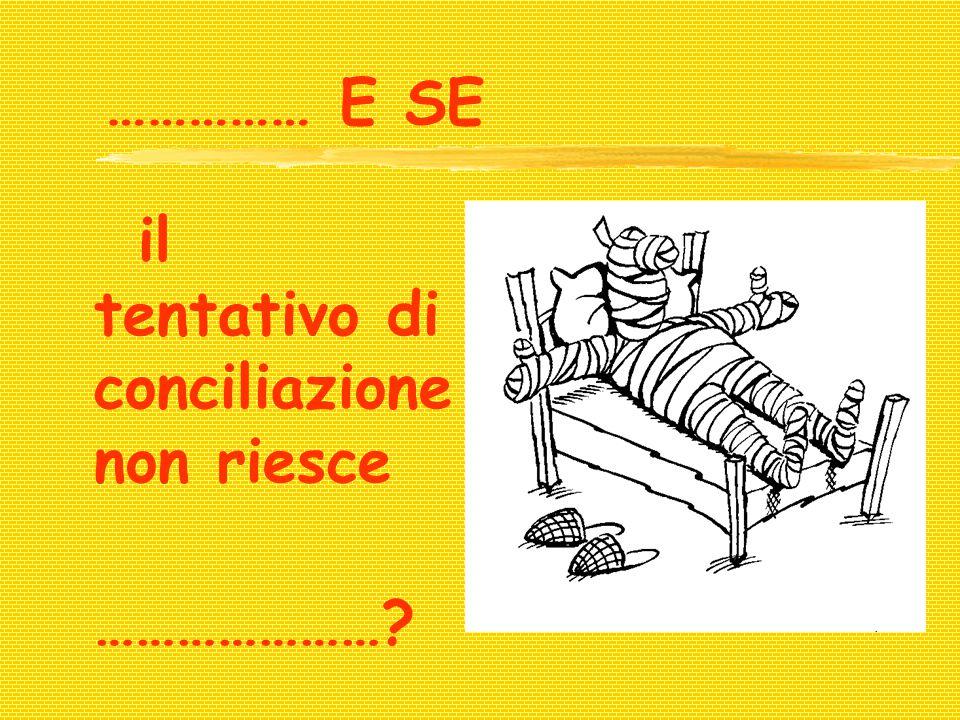 …………… E SE il tentativo di conciliazione non riesce …………………