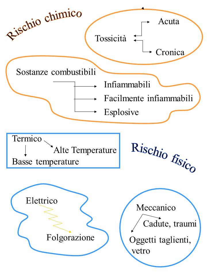 Cronica Tossicità Acuta Sostanze combustibili Infiammabili Facilmente infiammabili Esplosive Termico Alte Temperature Basse temperature Meccanico Ogge