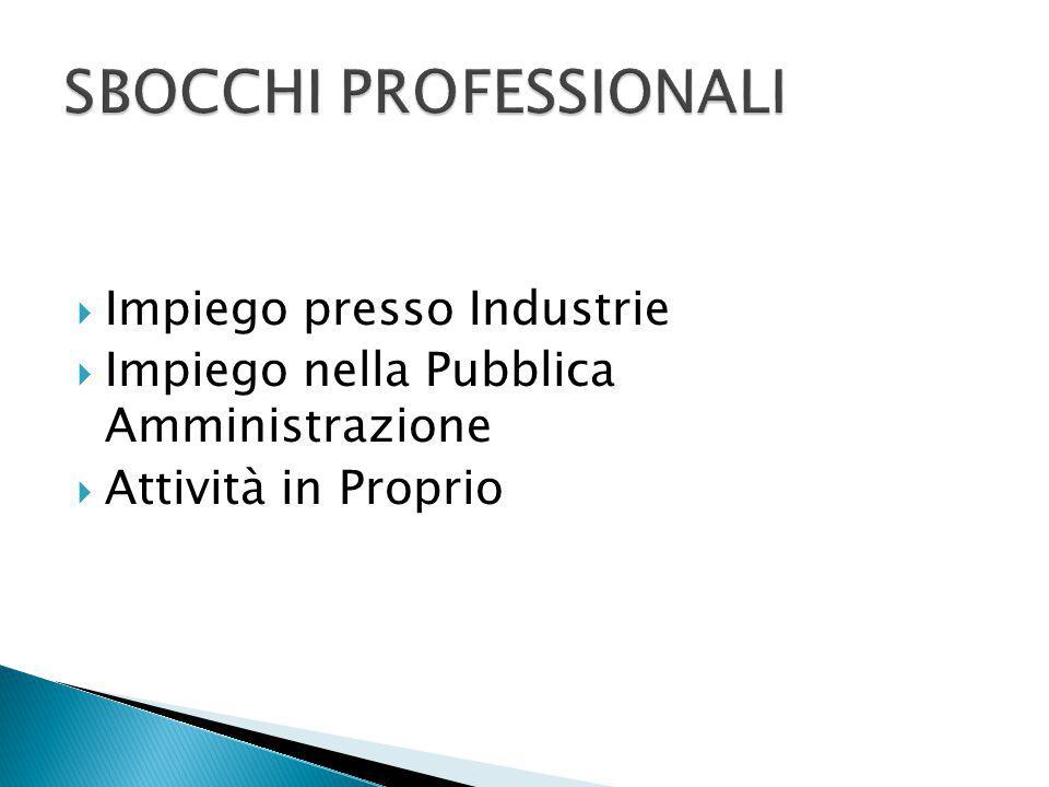  Impiego presso Industrie  Impiego nella Pubblica Amministrazione  Attività in Proprio