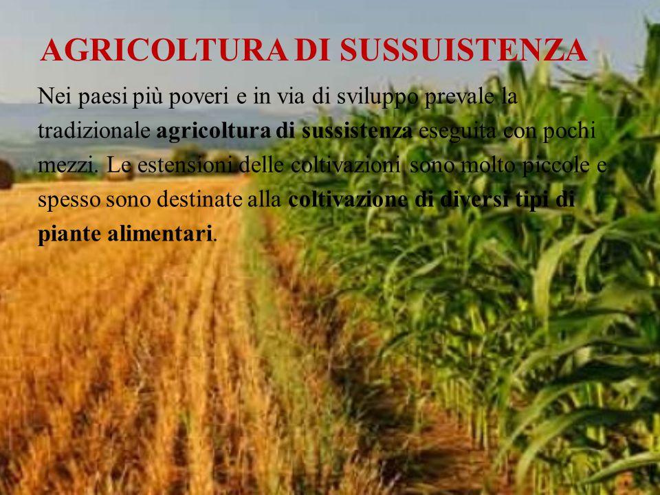 Nei paesi più poveri e in via di sviluppo prevale la tradizionale agricoltura di sussistenza eseguita con pochi mezzi. Le estensioni delle coltivazion