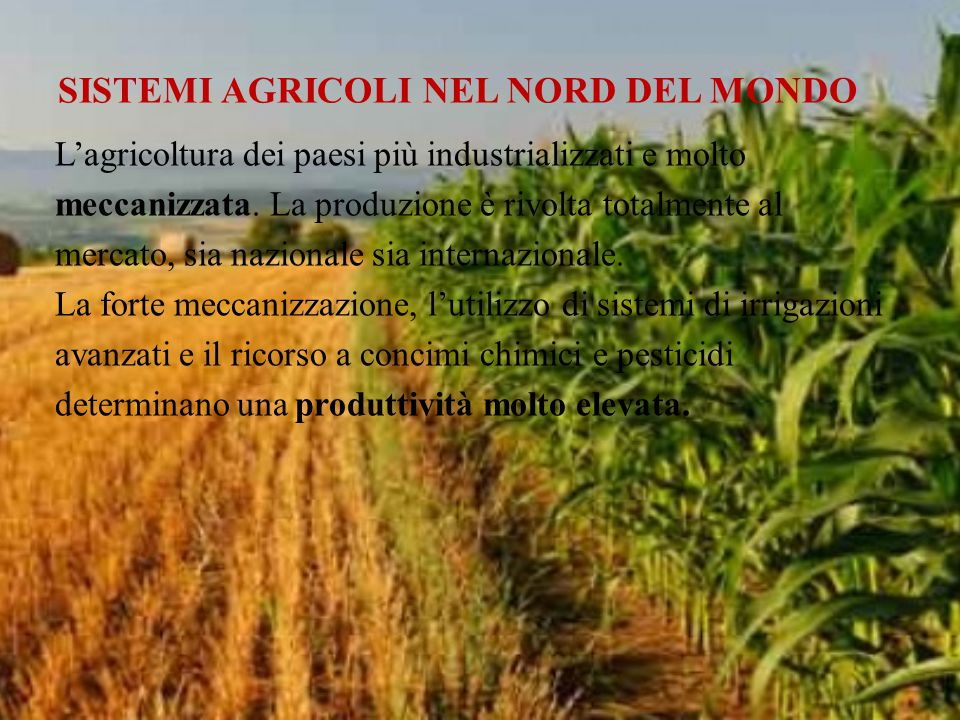 SISTEMI AGRICOLI NEL NORD DEL MONDO L'agricoltura dei paesi più industrializzati e molto meccanizzata. La produzione è rivolta totalmente al mercato,
