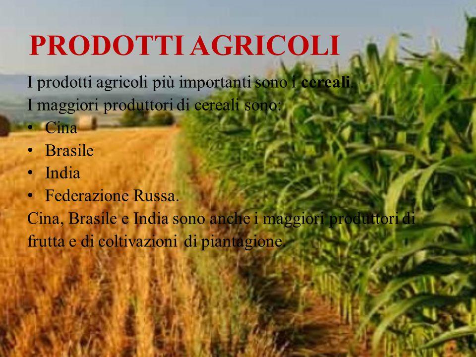 PRODOTTI AGRICOLI I prodotti agricoli più importanti sono i cereali. I maggiori produttori di cereali sono: Cina Brasile India Federazione Russa. Cina