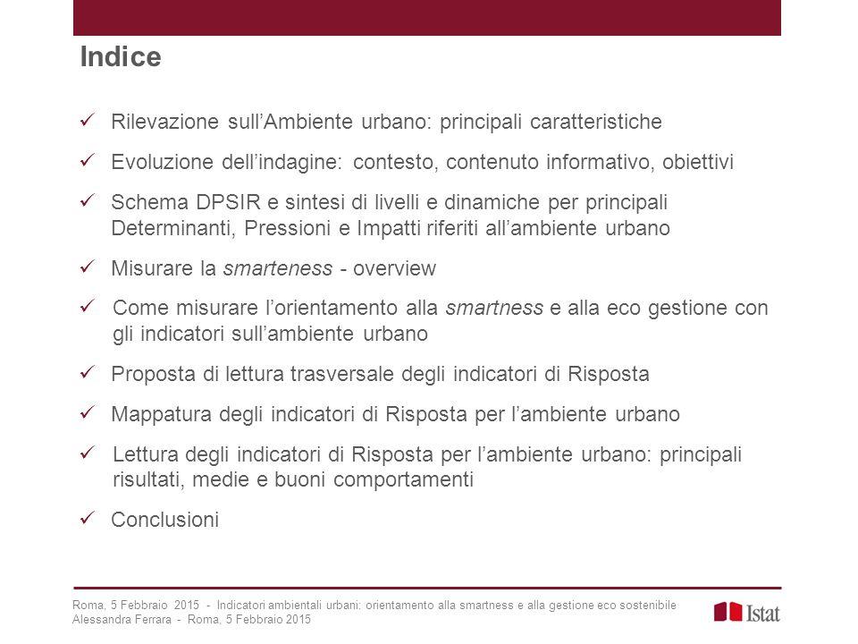 Indice Rilevazione sull'Ambiente urbano: principali caratteristiche Evoluzione dell'indagine: contesto, contenuto informativo, obiettivi Schema DPSIR