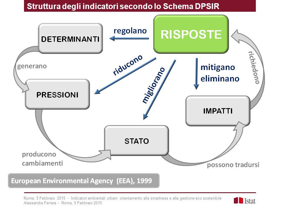 Struttura degli indicatori secondo lo Schema DPSIR Roma, 5 Febbraio 2015 - Indicatori ambientali urbani: orientamento alla smartness e alla gestione e